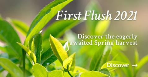 Grand Cru First Flush