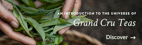 An introduction to the universe of Grand Cru Teas